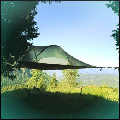 Tentsile Stingray Unique Tree Tent Morning