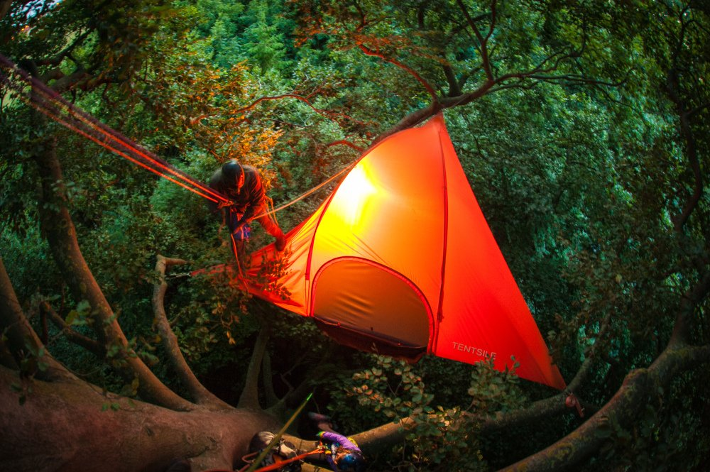 Tentsile Stingray Unique Tree Tent Treetop Living