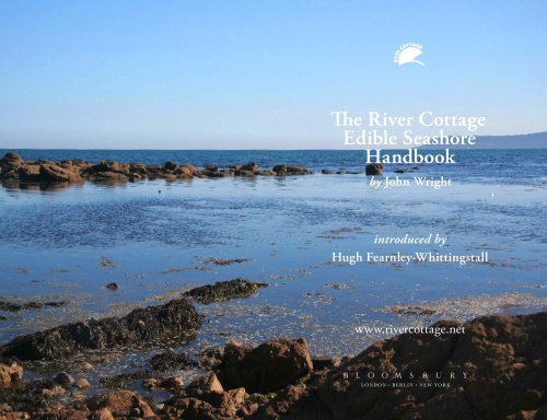 Edible Seashore: River Cottage Handbook No.5