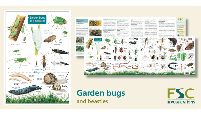 FSC Fold-Out ID Chart - Garden Bugs and Beasties