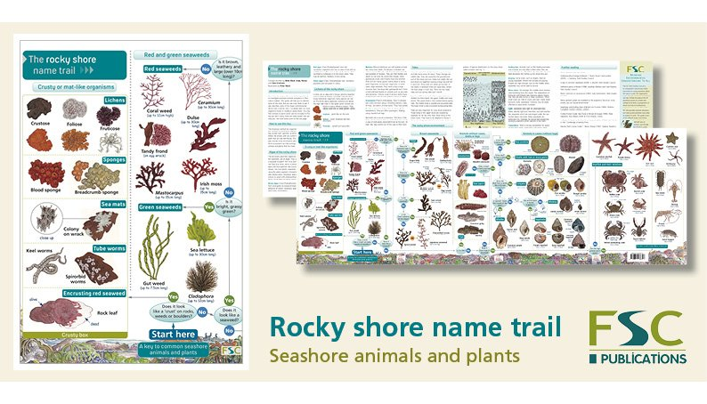 FSC Fold-Out ID Chart - Rocky Shore Name Trail